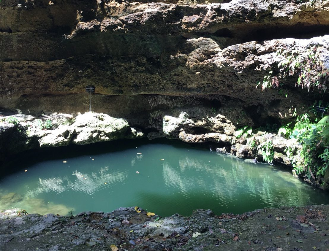 ペニダ島の泉