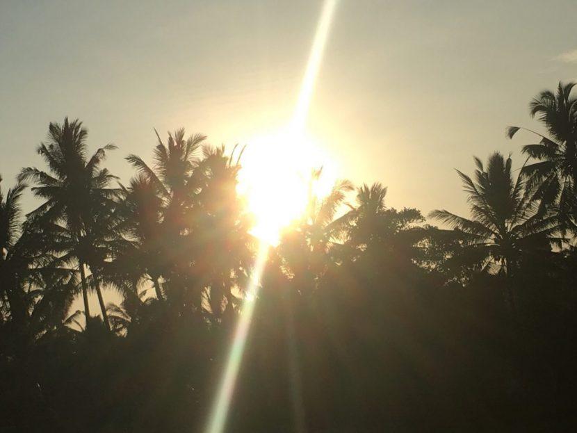 バリ島ウブドの朝日